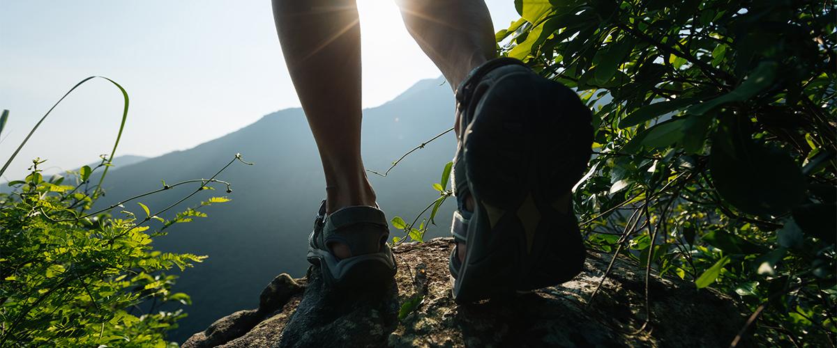 hike in roanoke